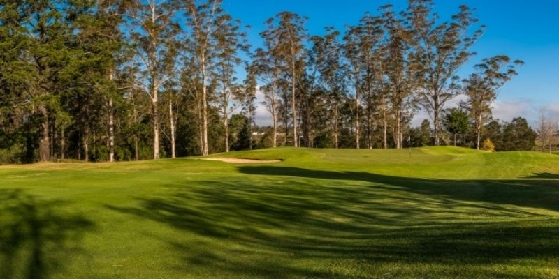 George Golf Club Joint No 10