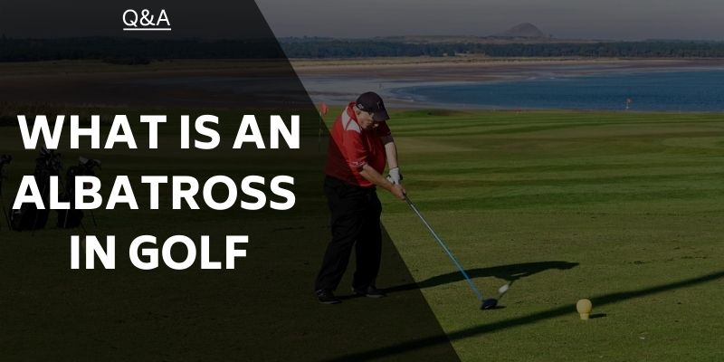 What is an Albatross in Golf? Golfing Terms Explained for Everyone